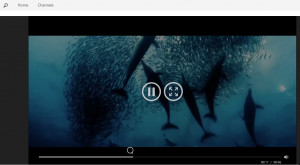 Play the video, with the usual options to view full screen, pause etc.