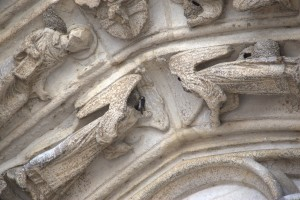 Swallows nesting in the west portal